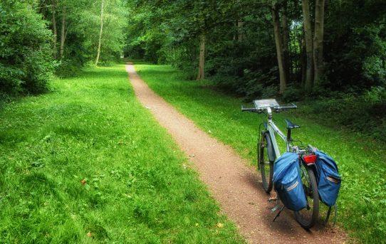 Rower to dobry kierunek rozwoju!